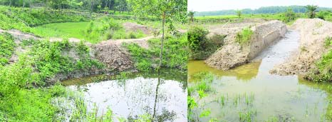 BHALUKA (Mymemsingh): The natural  water flow of  Dakatia Canal is being hindered as  an influential quarter has grabbed the both sides of the  canal causing waterlogging . Boro paddy cultivation in the adjacent areas  is also being affected . Urgent steps needed in this regard.
