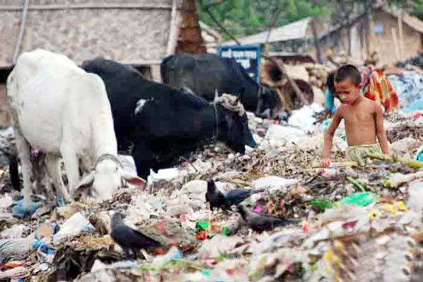 Heavy metal residues in cow milk: BAU study finds