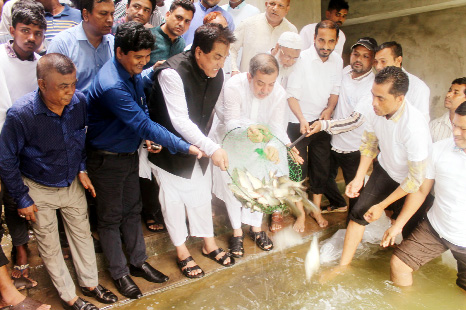 Chairman of the Parliamentary Standing Committee on Ministry  of Railway ABM Fazle Karim Chowdhury  MP releasing the fish fries at central upazila mosque tank  on Wednesday as chief guest.