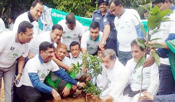 Chairman of the Parliamentary Standing Committee on Ministry of Railway ABM Fazle Karim Chowdhury MP  planting a  sapling of a fruit bearing plant at Raozan upazila sadar on Tuesday.
