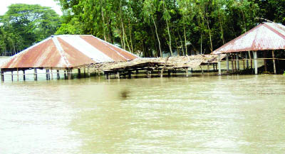 SAGHATA(Gaibandha): Houses at Saghata  have been submerged due to water rise of Jamuna and  Kathakhali River  yesterday.