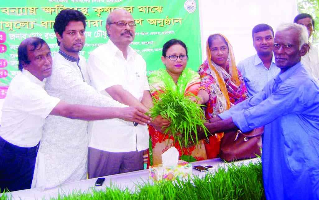 JOYPURHAT: District Administration, Joypurhat distributing Aman seedlings among the flood-hit  poor and marginal farmers at Khetlal Upazila recently.