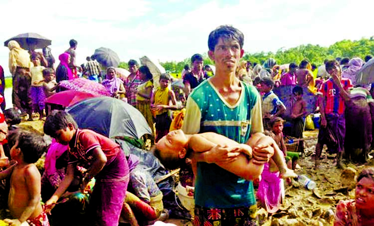 Myanmar forces use targeted campaign to terrorise, drive out Rohingyas: Amnesty