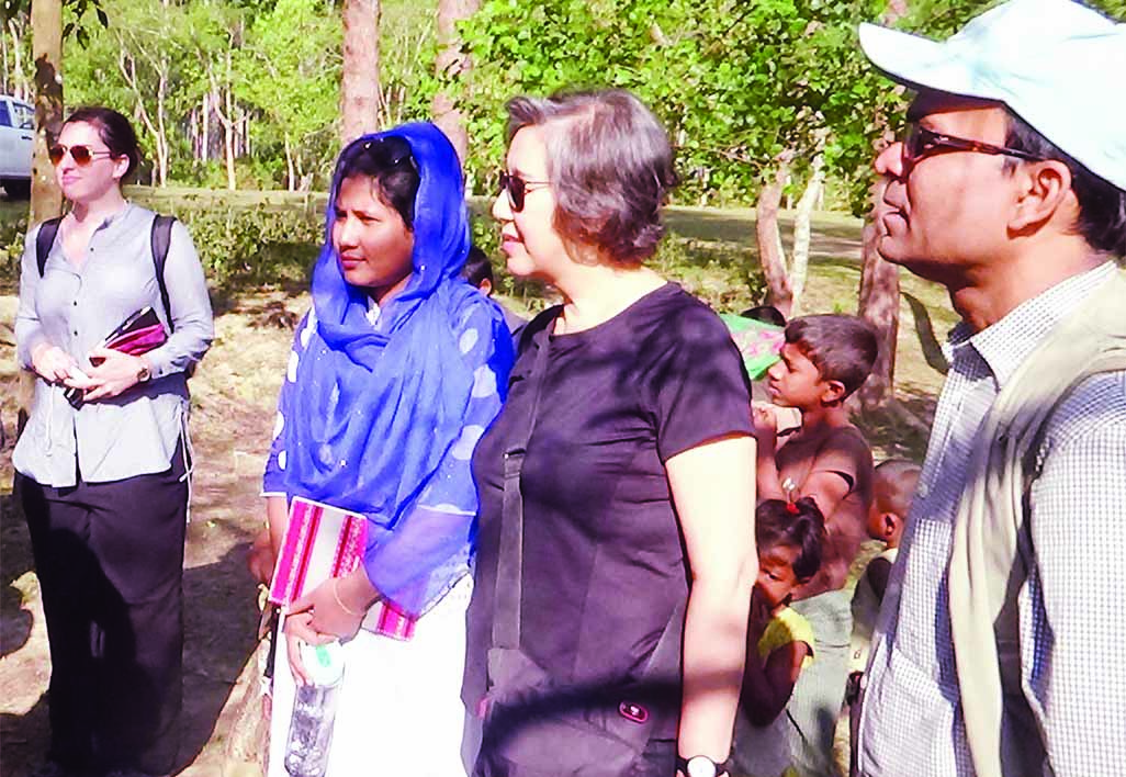 Rohingyas want to ensure rights before repatriation