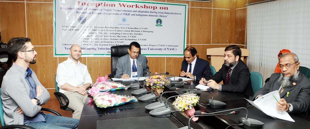 Linkoping University of Sweden and Chittagong Veterinary  & Animal Science University jointly organized three day- long workshop on Bangladesh Sweden Collaborative Projective at the conference hall of the University on Sunday.