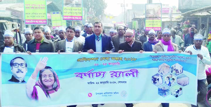 GANGACHARA(RANGPUR): A rally was brought out by Upazila Livestock Office, Gangachara on the occasion of the Livestock Service Week on Monday.