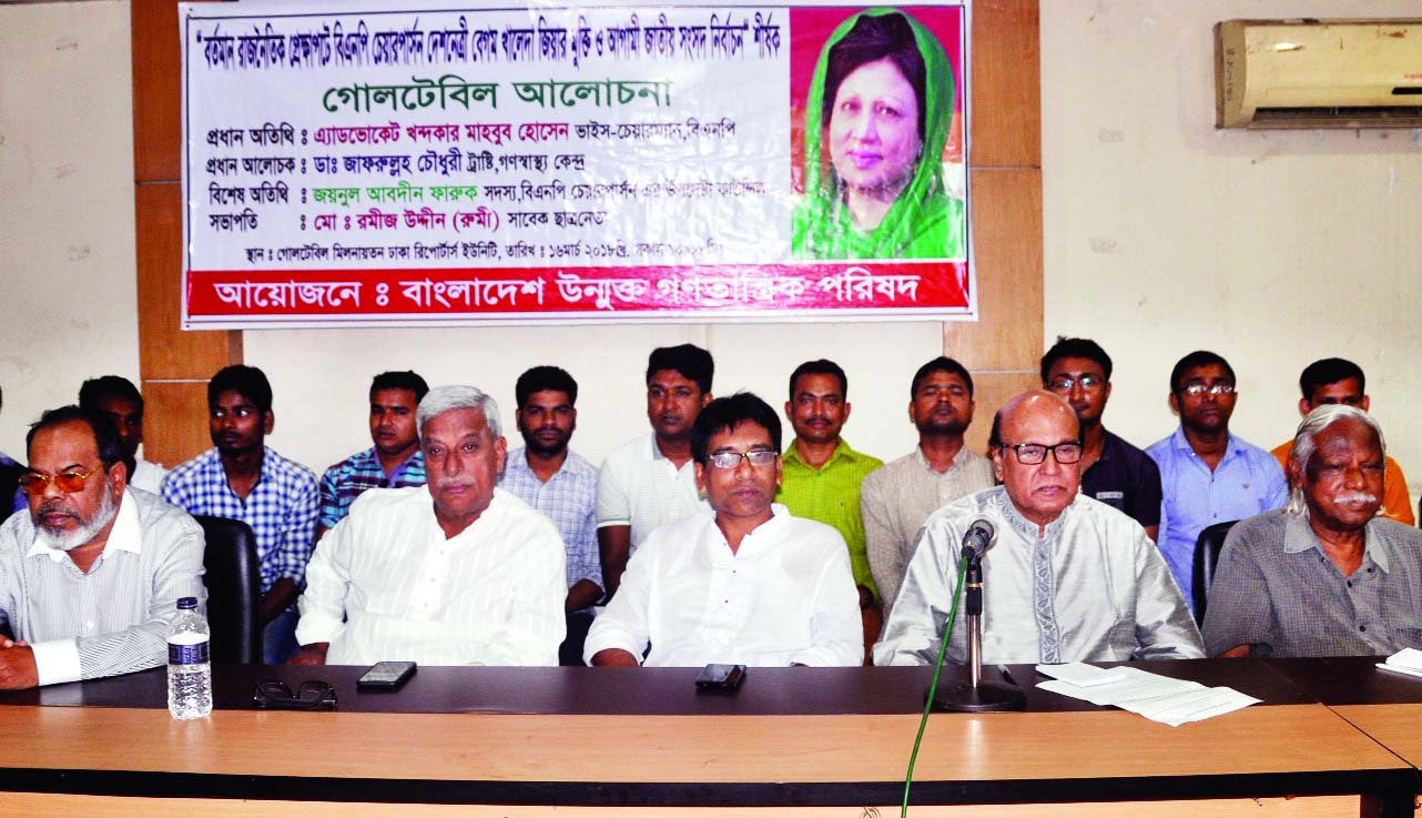 BNP Chairperson