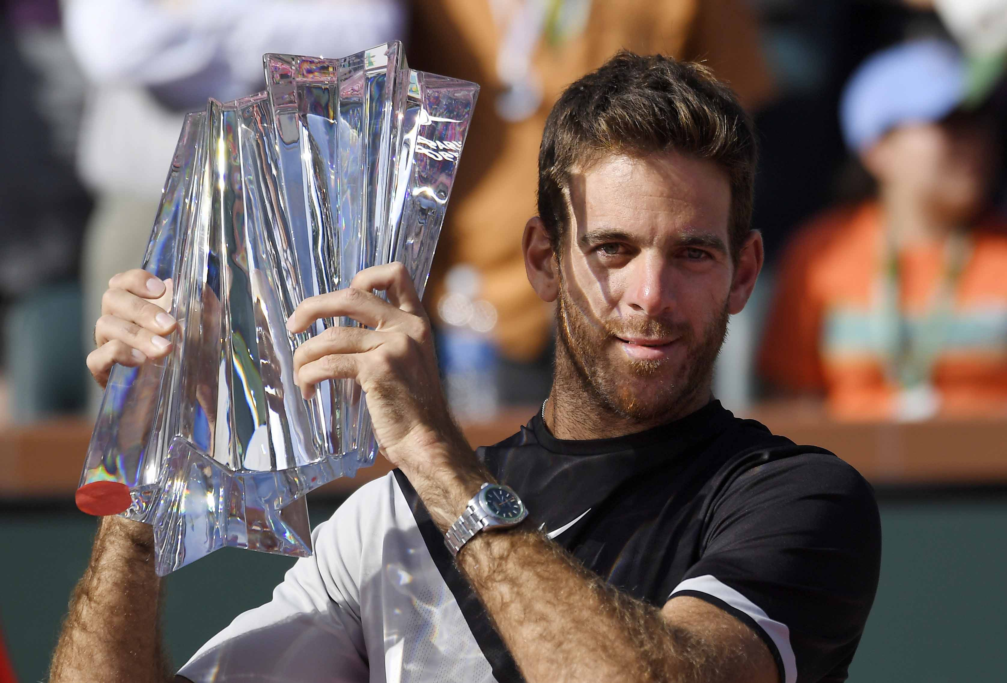 Del Potro bounds up ATP rankings after beating Federer
