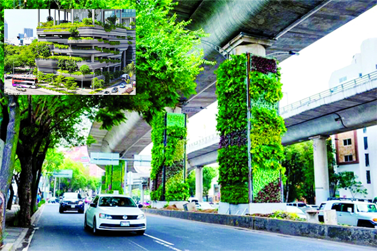 The generation next urban gardening
