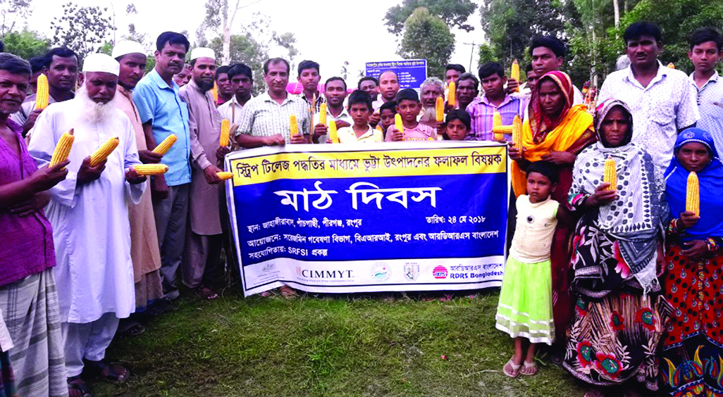 RANGPUR: A farmers' field day on results of maize output adopting strip tillage method was held at Jahangirabad  under Pirganj Upazila on Thursday afternoon.