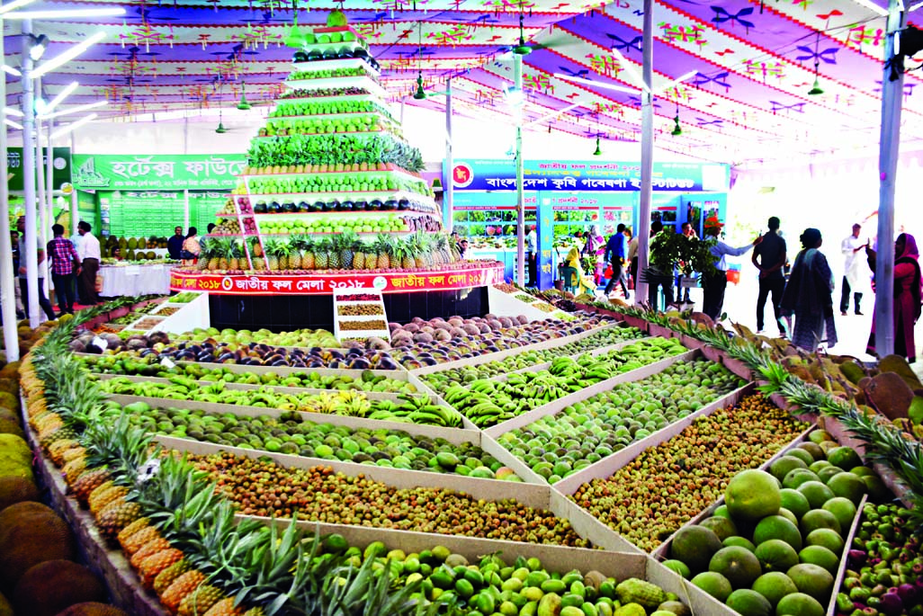 Different kind of fruits have been arranged at the National Fruits Fair in the city's Khamarbari on Friday. The Ministry of Agriculture organizes the fair.