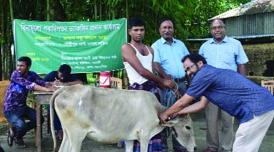 MYMENSINGH:  A free vaccination camp for cattle was held at Gidhausha Hason Ali High School in Gouripur Upazila organised by Rakhal Bandhu Kalyan Songstha on Wednesday.