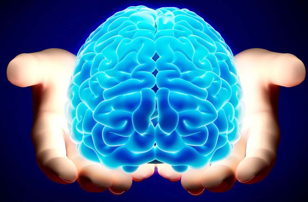 6 fascinating facts about the human brain