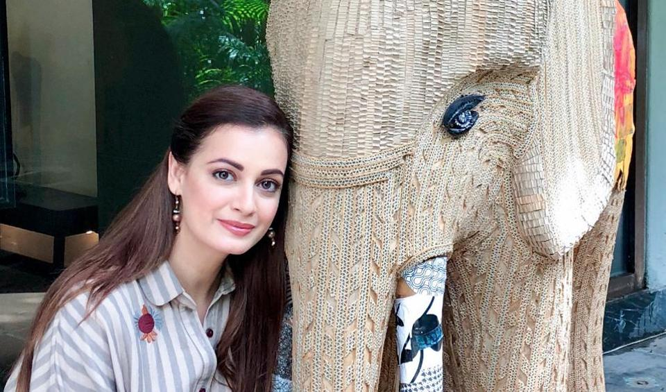 I saw a chained elephant on a school trip to the zoo and became upset: Dia Mirza