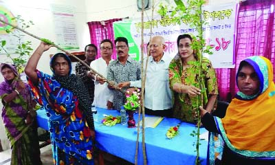 KESHABPUR (Jashore): H M Amir Hossain, Chairman, Keshabpur Upazila distributing saplings among the locals organised by Sushil Kashabpur Center, a voluntary organisation yesterday.