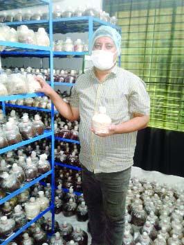 Litun Aktar achieves success in mushroom cultivation