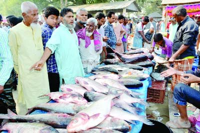 BOGURA: A Fish Fair was held at Utholi Village in Shibganj Upazila in observance of the Nabanna Festival on Sunday.