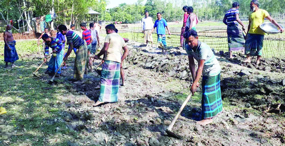 ULIPUR(Kurigram): Youths at Dalbari Village  constructing  a road in  the village voluntarily as  70 families of the village has been suffering for want of the road from more than 30 years.  This nap was taken on Monday.