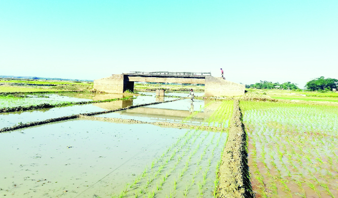 Bridge without road  for 21 yrs in Kulaura