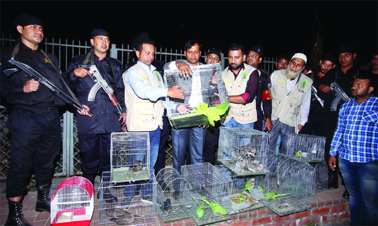 RAB's wild life crime control unit freed about 461 wild birds at Chandrima Udyan, seized earlier from Abdullahpur of Tongi area on Sunday.