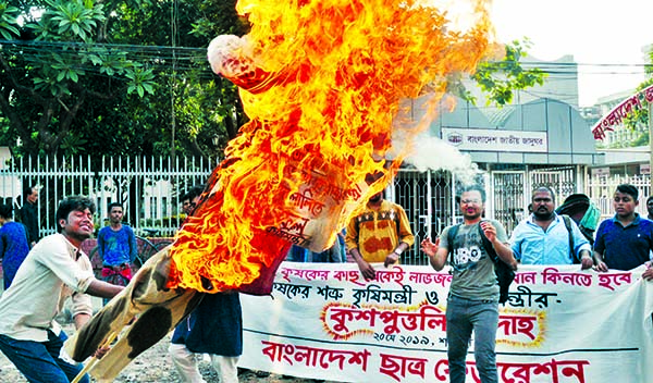 Bangladesh Chhatra Federation burning the effigy of Food Minister Dr Abdur Razzak in front of the National Museum on Monday protesting his comment on low price of paddy.