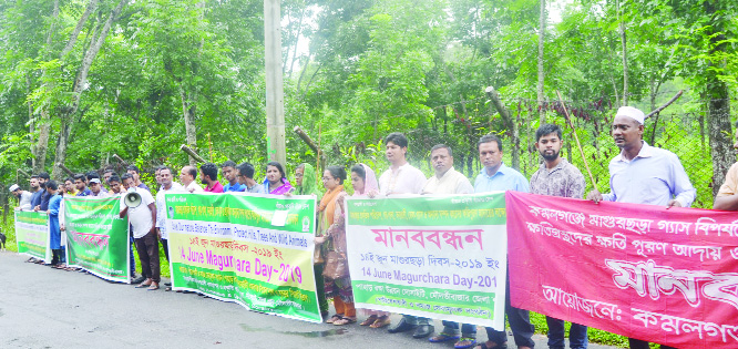 KULAURA (Moulvibazar): Different environmental organisations formed a human chain on the occasion of the Magurchhara Day on Friday.