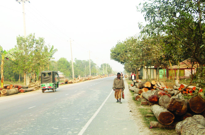 MYMENSINGH: Vehicles movement have been hampered as construction materials and logs were left illegally  on Kishoreganj- Mymensingh Highway  at Nandail Upazila point. This snap was taken on Sunday.