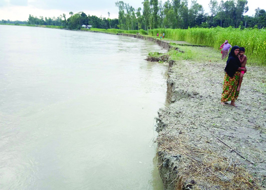 KURIGRAM: Teesta River erosion has taken a serious turn at Rajarhat Upazila which devouring dwelling houses and crop lands. This snap was taken on Monday.