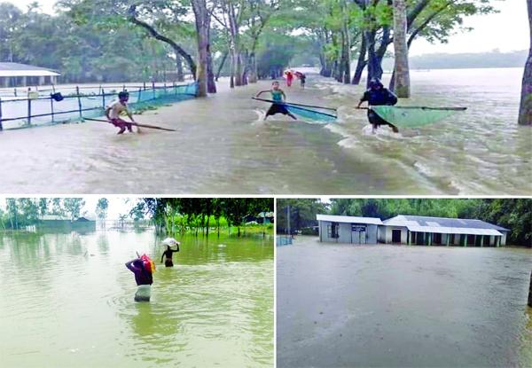 Jamuna, Teesta and Dharla turn turbulent amid heavy downpour: 25,000 families marooned in Lalmonirhat, Shibalaya in Manikganj: Hundreds of houses, croplands washed away: 30 schools shut
