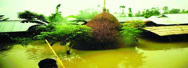 SUNDARGANJ(Gaibandha): Dwelling houses including vast areas went under flood water  in Sundarganj Upazila yesterday.
