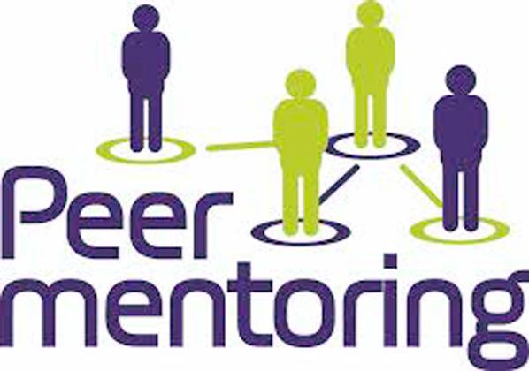 Peer Co-Mentoring
