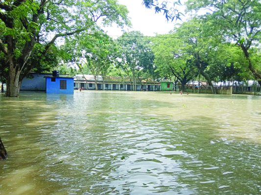 MELANDAH (Jamalpur) : Nangla Primary School, madrasa and union parishad compound have been submerge due to flood . This picture was taken on Thursday.