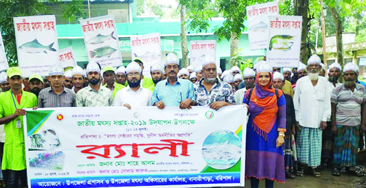 BANARIPARA (Barishal): Banaripara Upazila Administration and Fisheries Department brought out a rally marking the Natioanl Fisheries Week on Thursday.