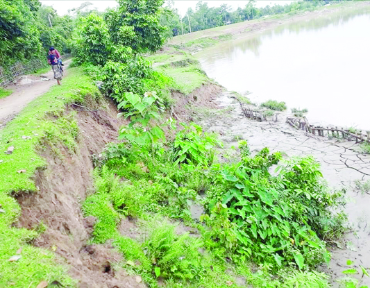Monu River protection dam turns risky in Kulaura