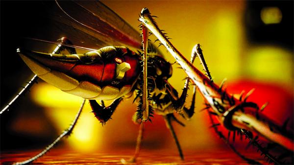 Dengue: A fatal disease