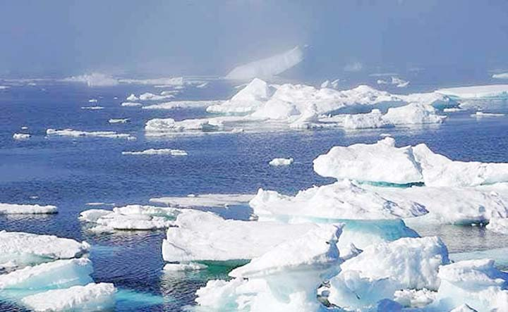 Scientists find Arctic Ocean sea ice loaded with microplastics