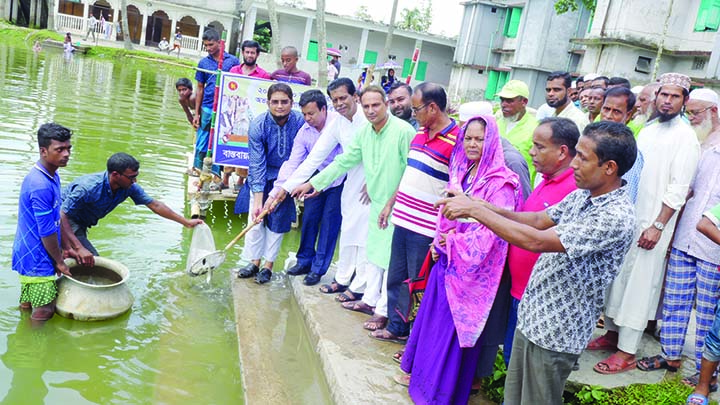 BETAGI (Barguna): Maksudur Rahman Forkan, Chairman, Upazila Parishad releasing fish fries at Upazila Parishad pond on Monday.