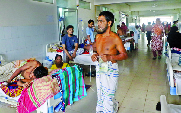 1446 hospitalised in 24 hours