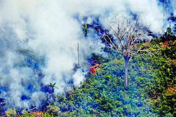 This fire, one of hundreds burning in the Amazon region, was photographed about 65 kilometers (40 miles) from Porto Velho in northern Brazil's Rondonia state.