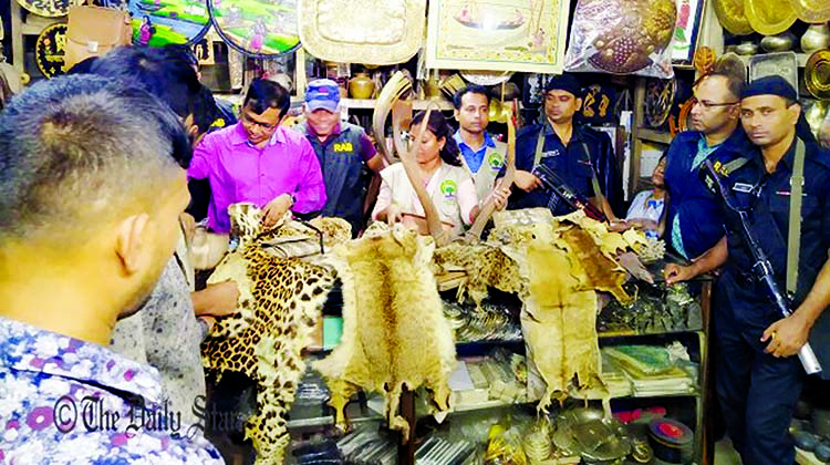 232 wild animal hides seized by RAB: 2 sent to jail