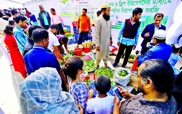 Toxic-free vegetables put on display at the 'Krishoker Bazar' at Manik Mia Avenue in city on Friday.