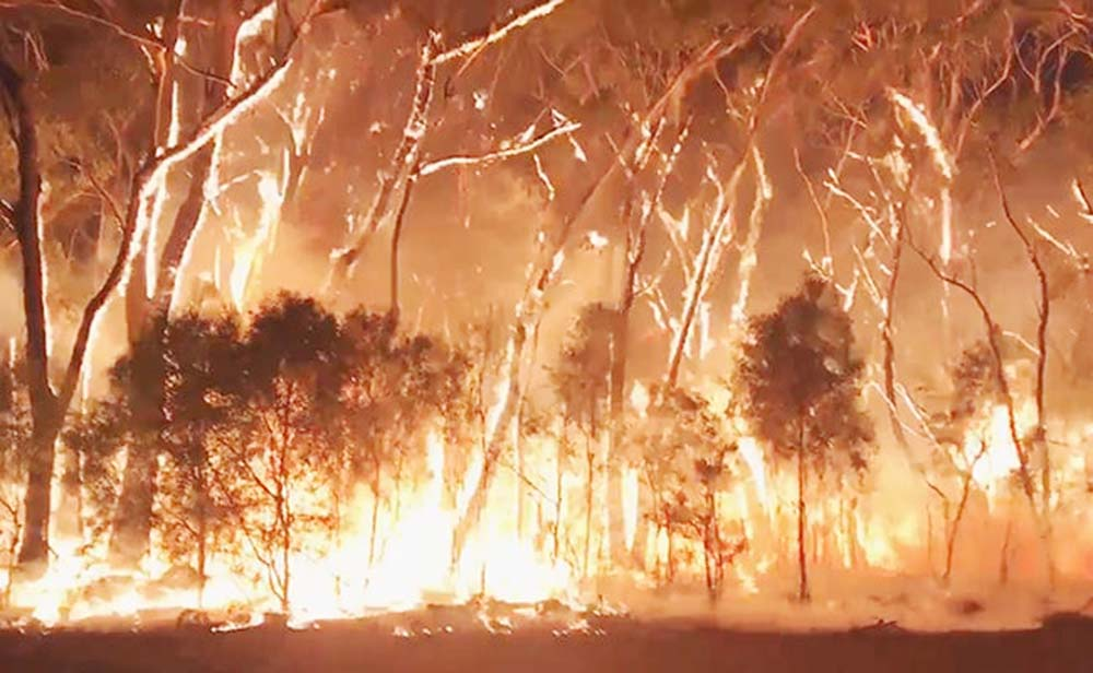 Australia braces for bushfires as strong winds create 'severe' conditions