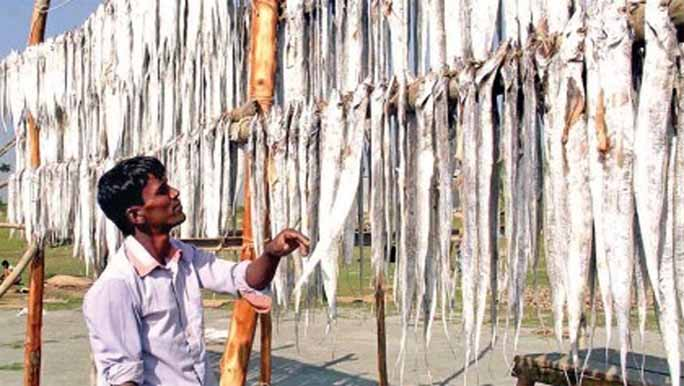 Dry fish processing begins in south bank of Karnaphuli River