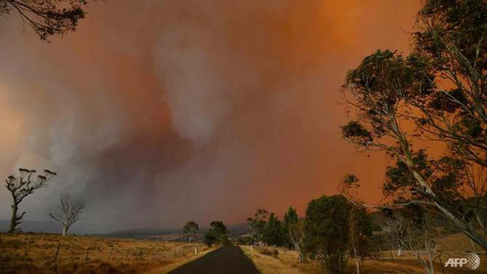 Bushfires left many Australians fearful for the future