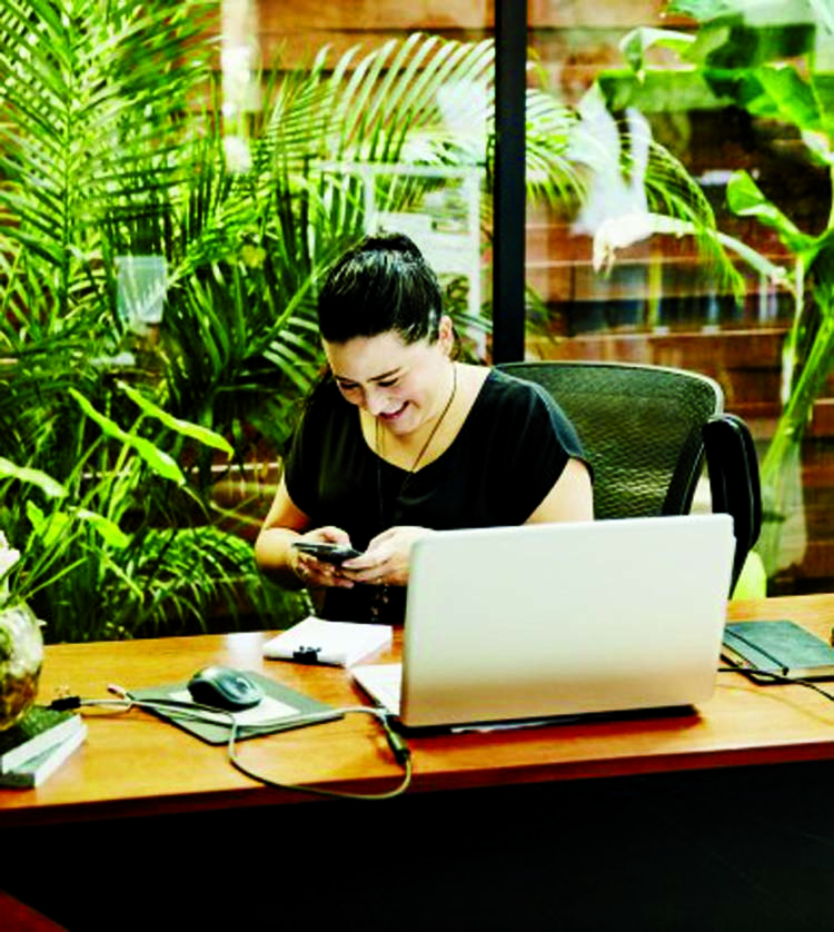 Reducing stress  keeps green plants in office