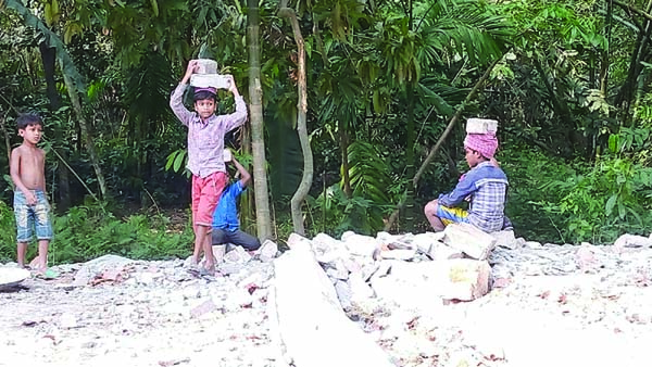 BAMNA (Barguna): Influentials using child labourers  for Marking a mandir at Akhrabari area in Bamna Upazila  . This snap was taken on Friday .