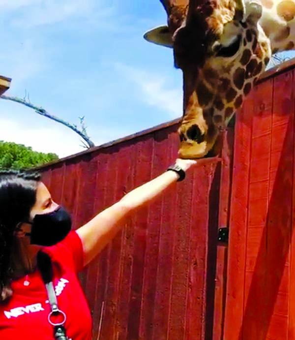 Sunny Leone visits wildlife centre, shares adorable video