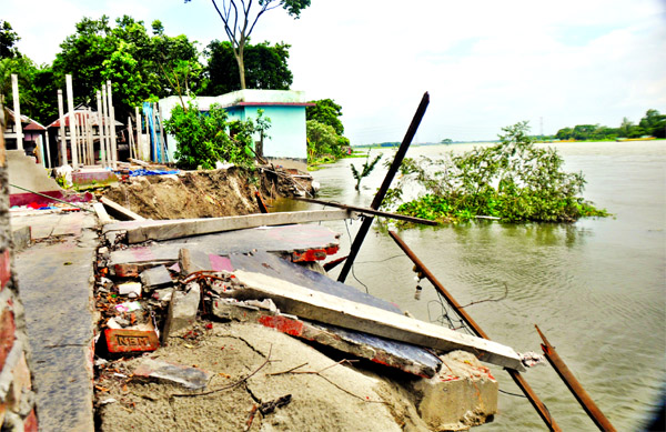 Several houses and establishments at Gaberpara of Islampur under Sirajdikhan in Munshiganj devoured due to erosion in the River Padma.