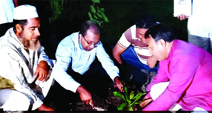Dr. Akram Hossain Chowdhury, Chairman, Barind Multipurpose Development Authority (BMDA) inaugurates the planting of cashew nut saplings through video conference at Bindhara in Panchbibi Upazila of Joypurhat on Thursday.