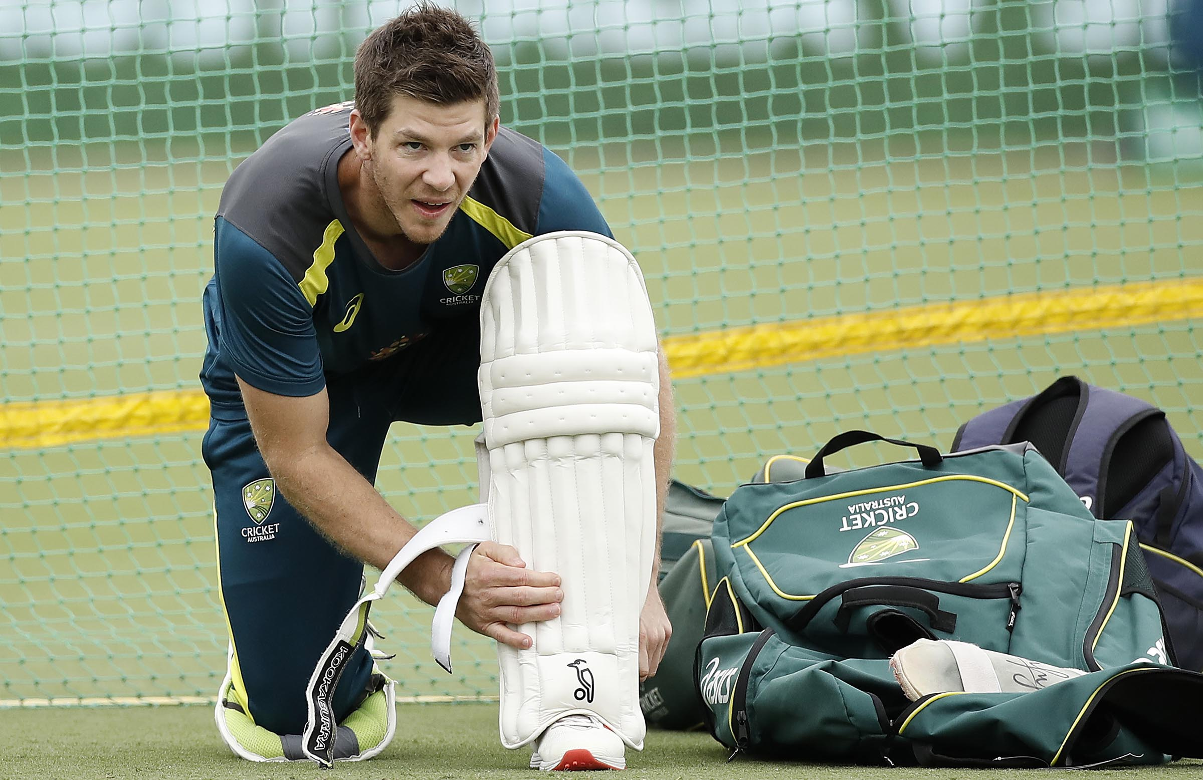 Annoying to lose Test series against India: Paine